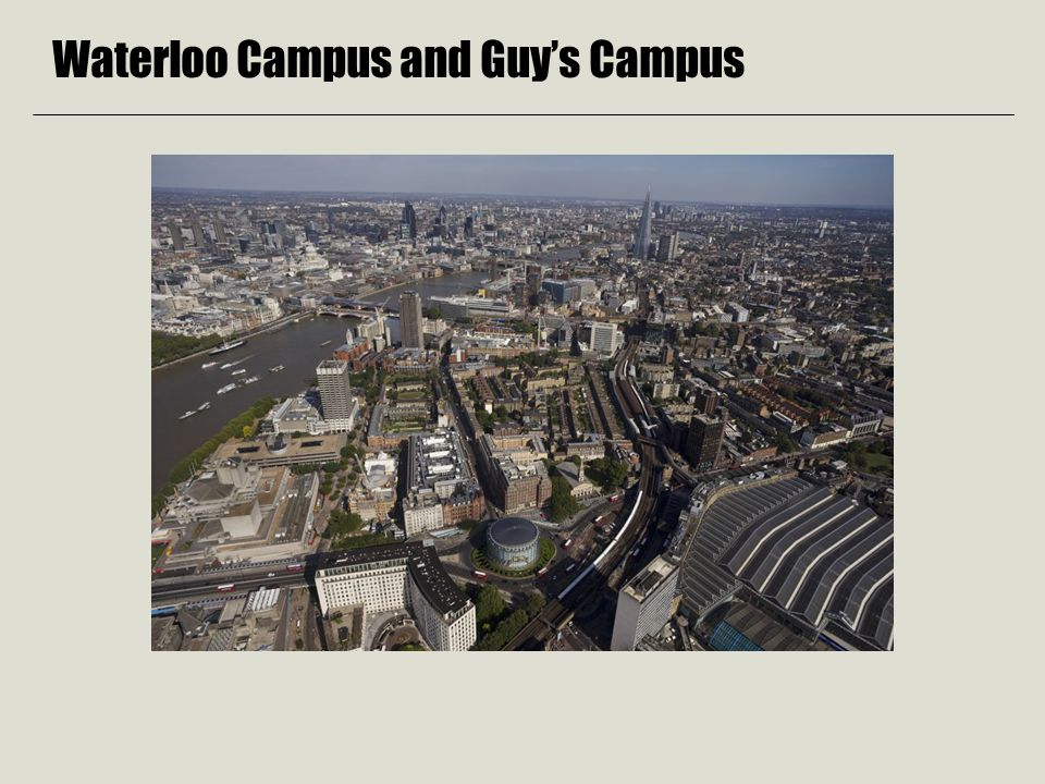 Waterloo Campus and Guy's Campus