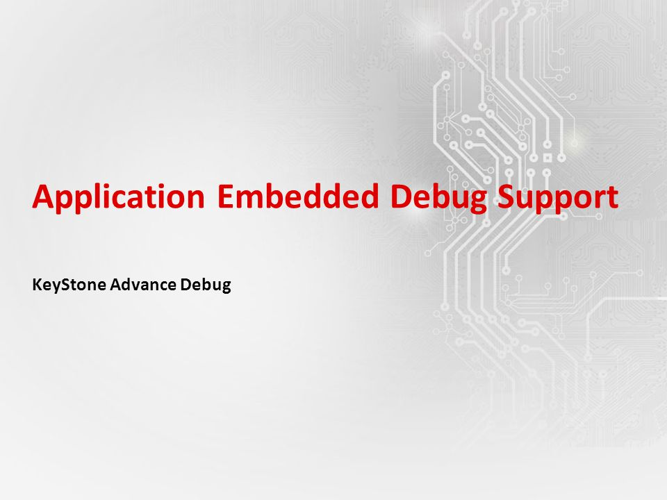 Application Embedded Debug Support KeyStone Advance Debug