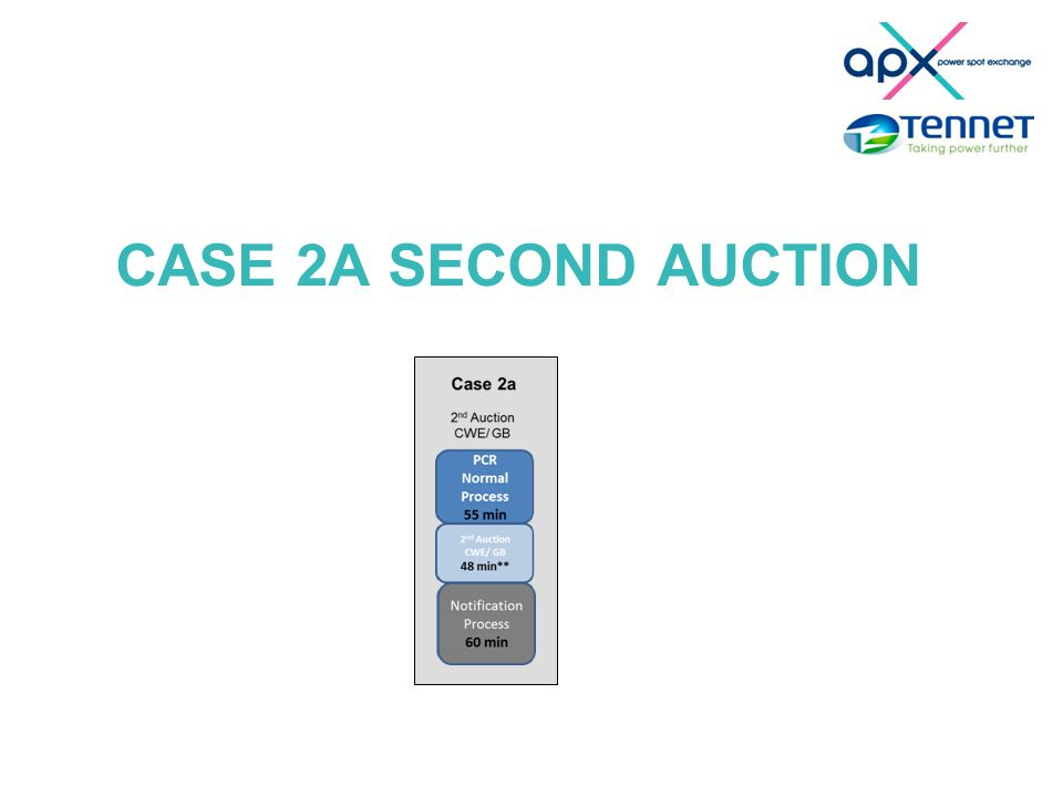CASE 2A SECOND AUCTION