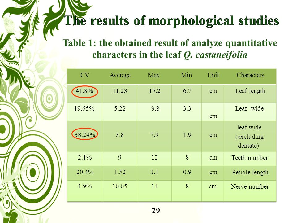29 Table 1: the obtained result of analyze quantitative characters in the leaf Q. castaneifolia