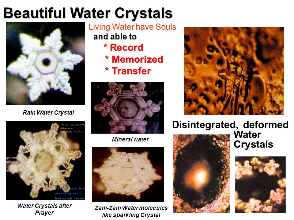 Scientific Research in Japan – Prof Emoto Living Water Have Soul & Feelings.