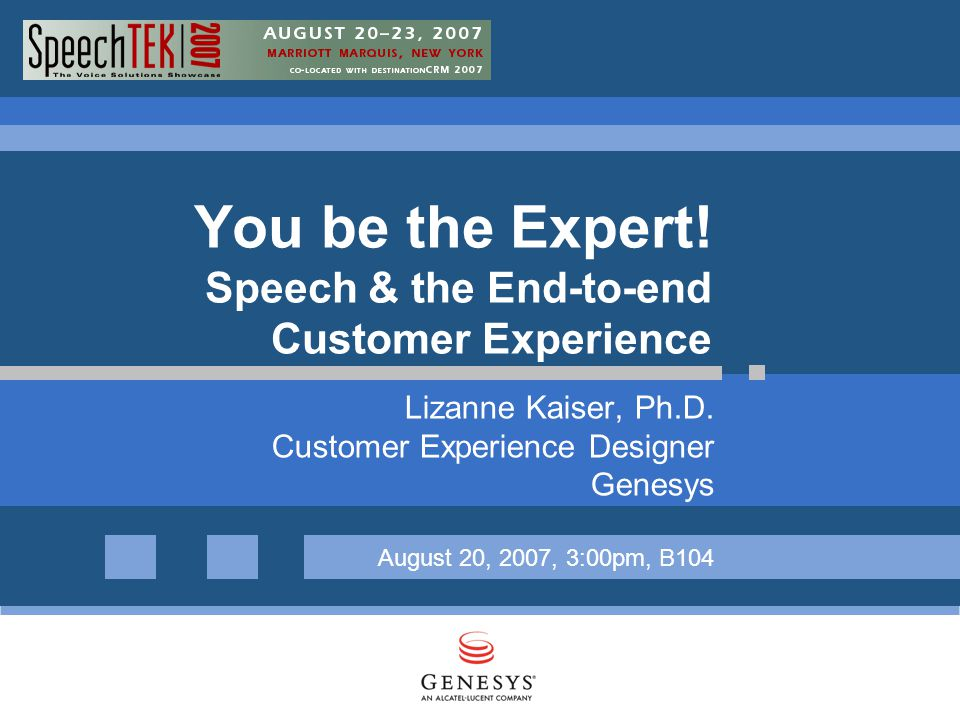 You be the Expert. Speech & the End-to-end Customer Experience Lizanne Kaiser, Ph.D.