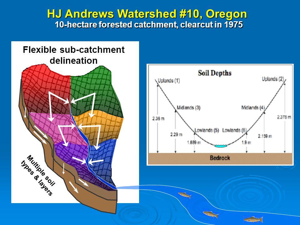 1996 1997 19981999 2000 2001 Stream Discharge (mm/d) Soil Moisture 0.6 0.5 0.4 0.3 0.2 0.1 0 Jan Feb Mar Apr May Jun July Aug Sep Oct Nov Dec 100 cm 70 cm 30 cm