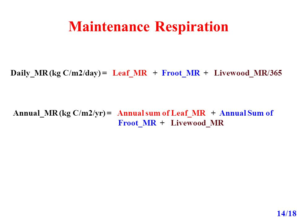 Maintenance Respiration 14/18 Daily_MR (kg C/m2/day) = Leaf_MR + Froot_MR + Livewood_MR/365 Annual_MR (kg C/m2/yr) = Annual sum of Leaf_MR + Annual Sum of Froot_MR + Livewood_MR