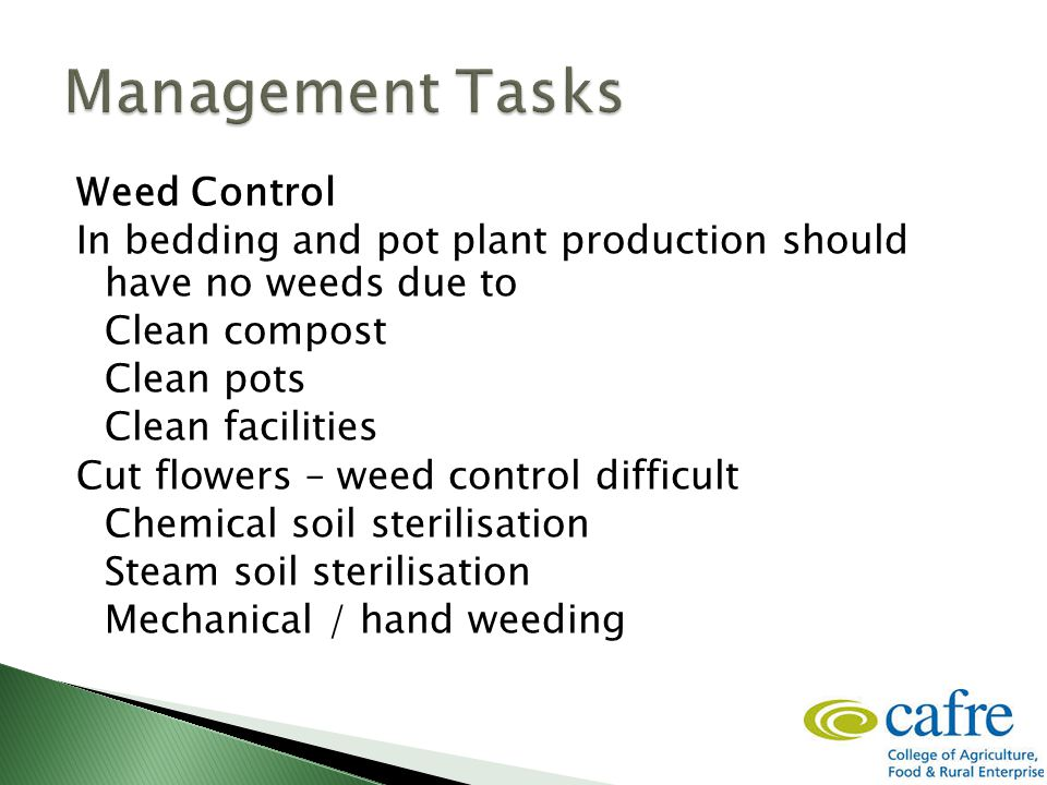 Weed Control In bedding and pot plant production should have no weeds due to Clean compost Clean pots Clean facilities Cut flowers – weed control difficult Chemical soil sterilisation Steam soil sterilisation Mechanical / hand weeding