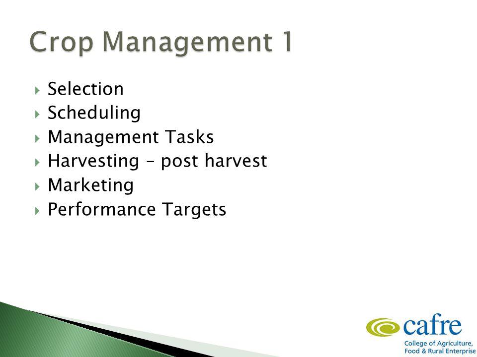  Selection  Scheduling  Management Tasks  Harvesting – post harvest  Marketing  Performance Targets