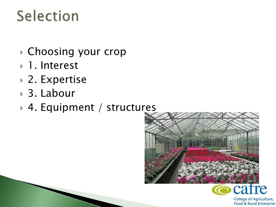  Choosing your crop  1. Interest  2. Expertise  3. Labour  4. Equipment / structures