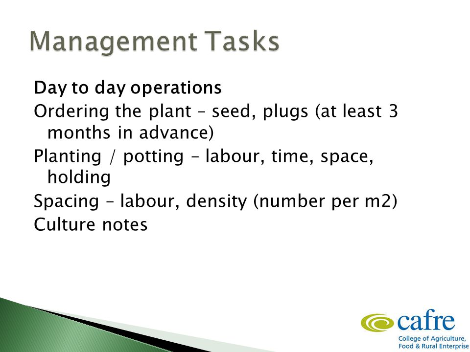 Day to day operations Ordering the plant – seed, plugs (at least 3 months in advance) Planting / potting – labour, time, space, holding Spacing – labour, density (number per m2) Culture notes