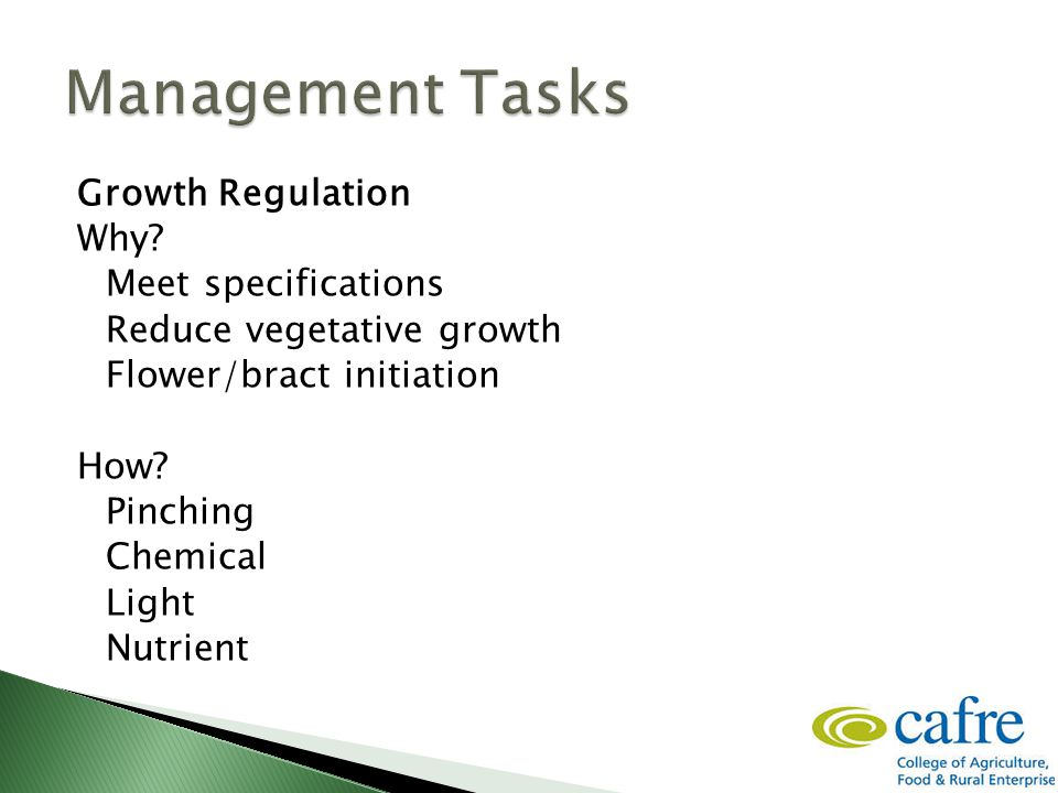 Growth Regulation Why. Meet specifications Reduce vegetative growth Flower/bract initiation How.