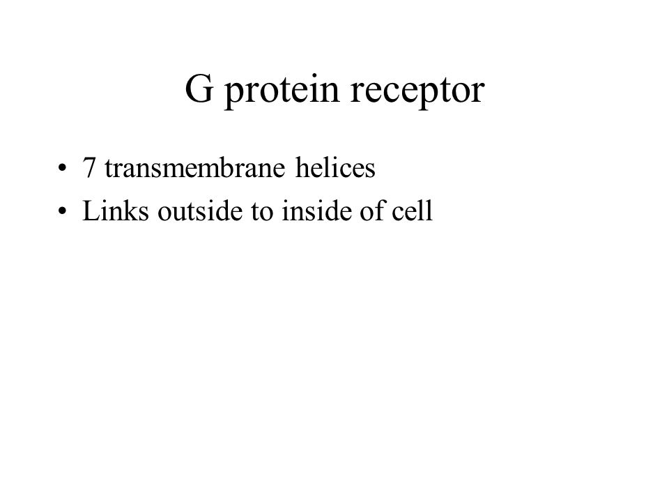 G protein receptor 7 transmembrane helices Links outside to inside of cell
