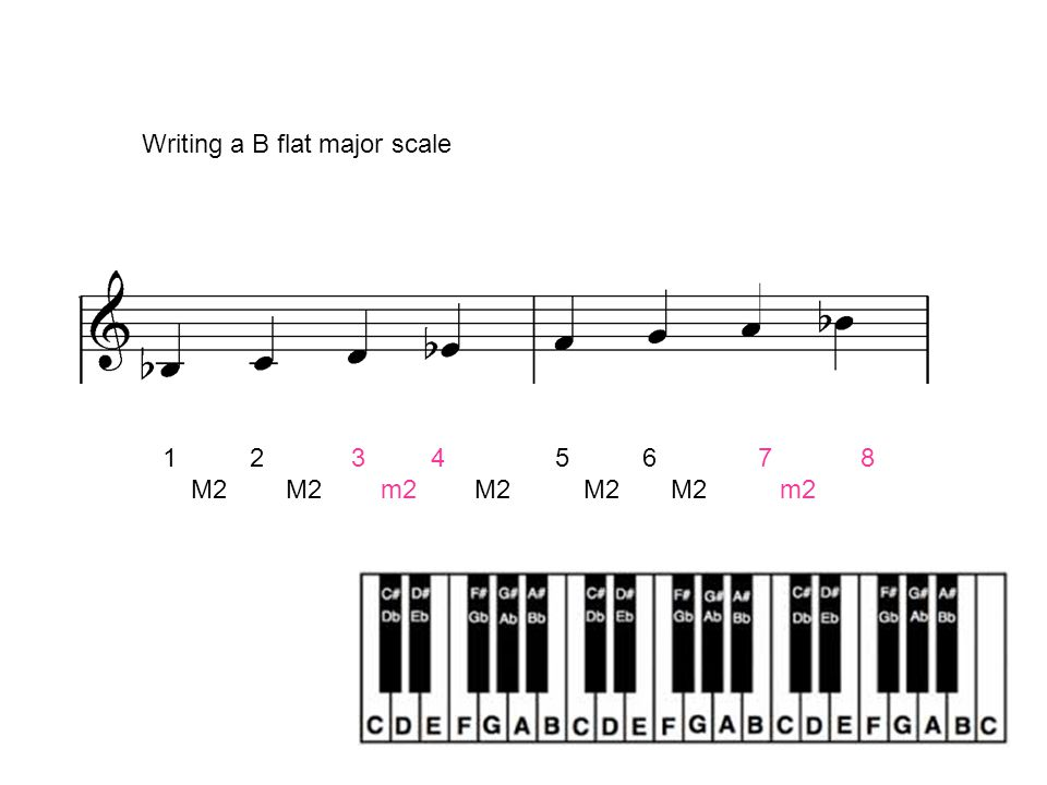 Follow the same steps and write out the following major scales on treble and bass clefs: G Major Scale E major A Major scale E flat major F major scale B flat major scale D major scale Exercises:Exercises