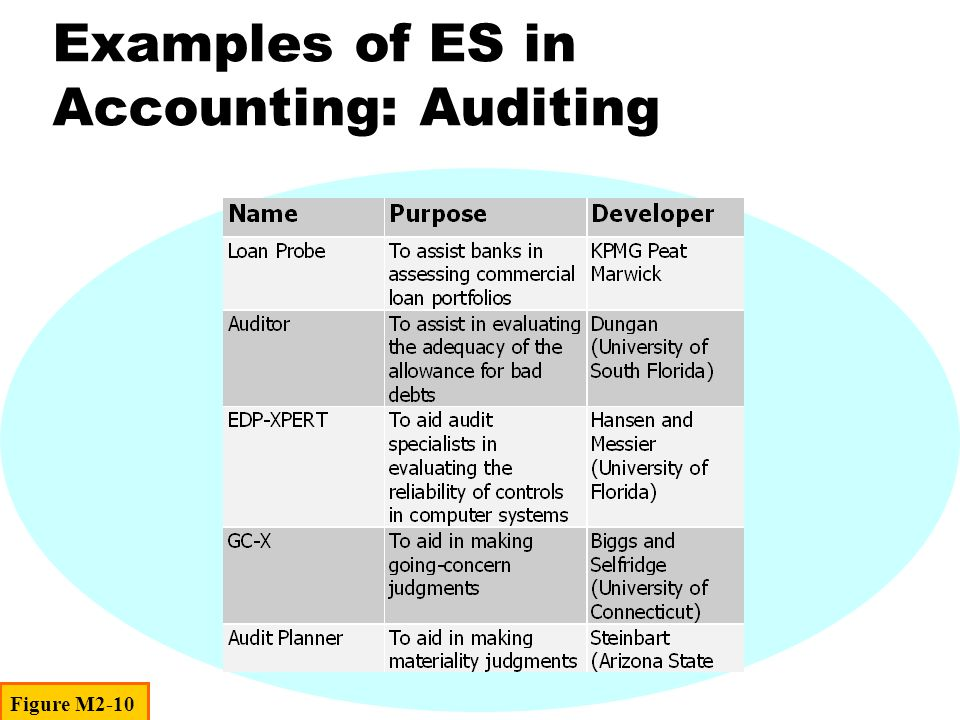 Examples of ES in Accounting: Auditing Figure M2-10
