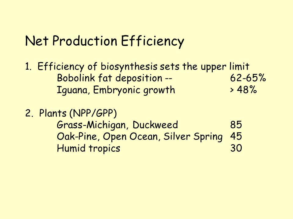 Net Production Efficiency 1.