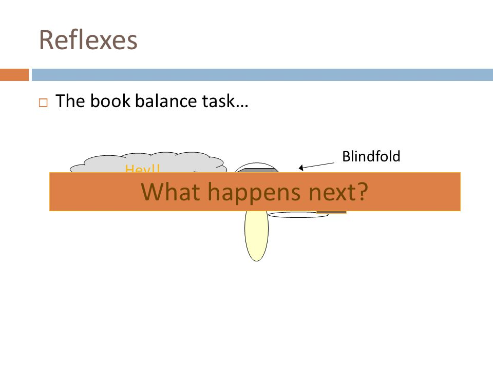 Reflexes  The book balance task… Hey!! Blindfold What happens next?
