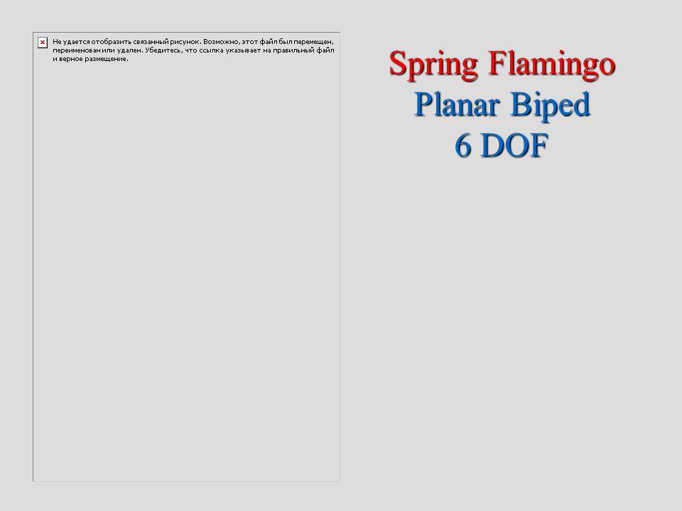 Spring Flamingo Planar Biped 6 DOF