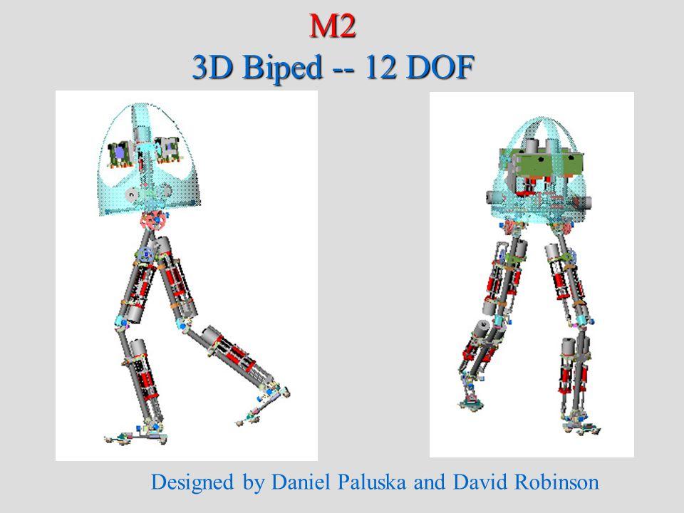 M2 Simulation 3D Biped -- 12 DOF