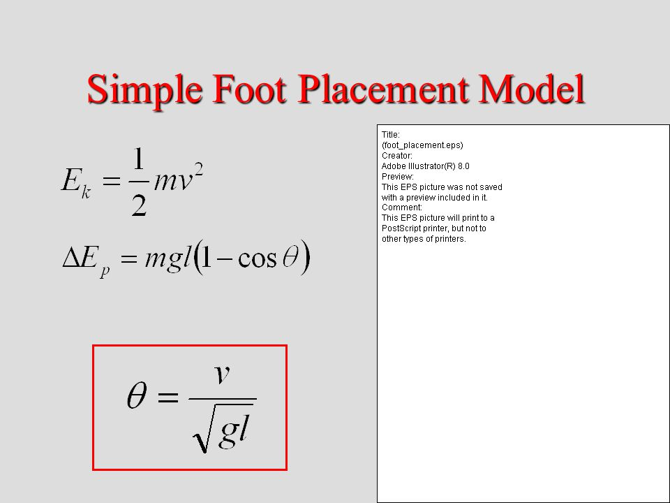 Simple Foot Placement Model