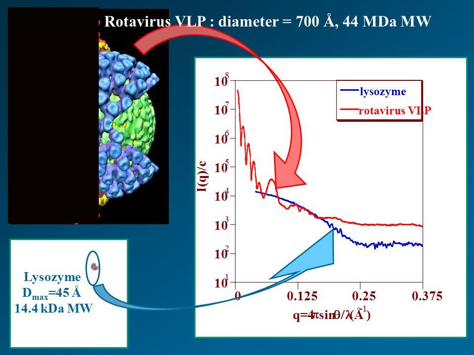 Rotavirus VLP : diameter = 700 Å, 44 MDa MW Lysozyme D max =45 Å 14.4 kDa MW