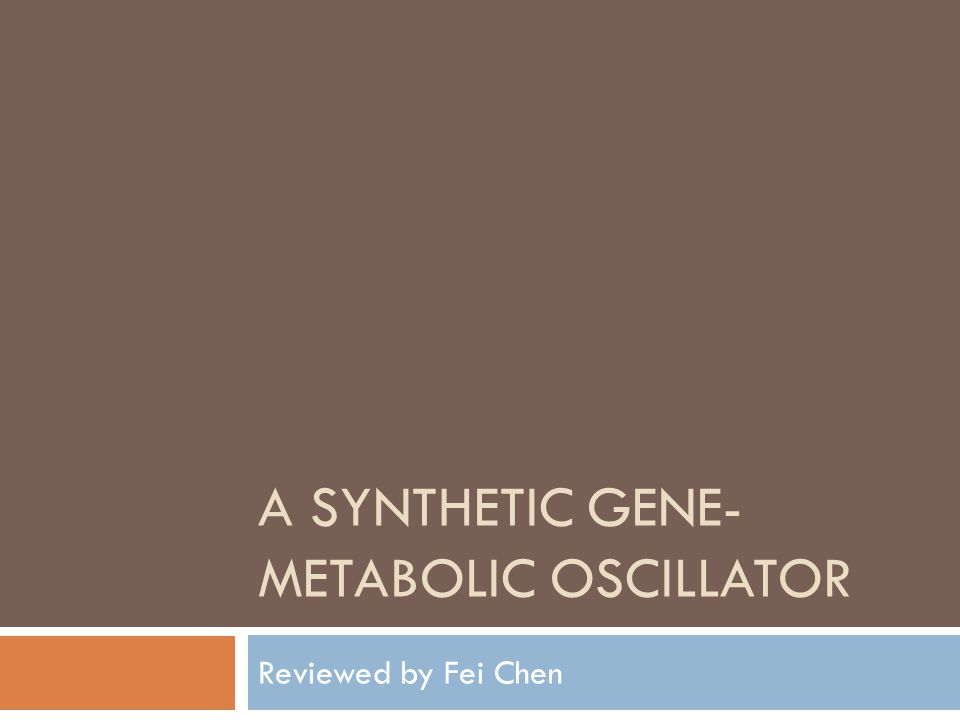 A SYNTHETIC GENE- METABOLIC OSCILLATOR Reviewed by Fei Chen