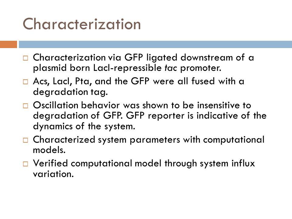 Results: Computational Characterization