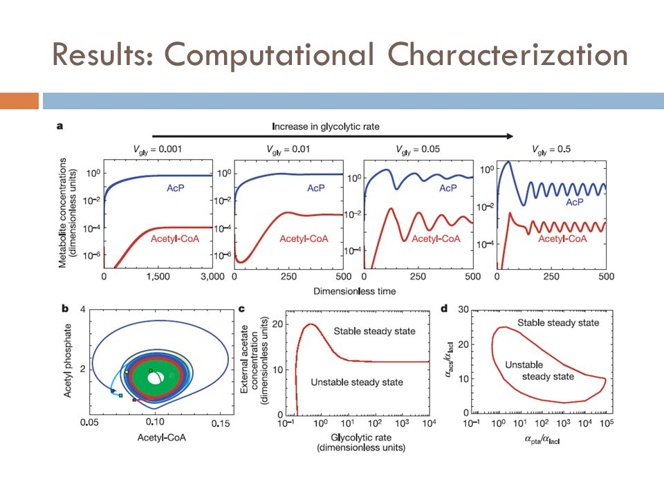 Results: Computational Characterization