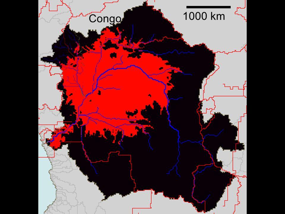 1000 km Congo