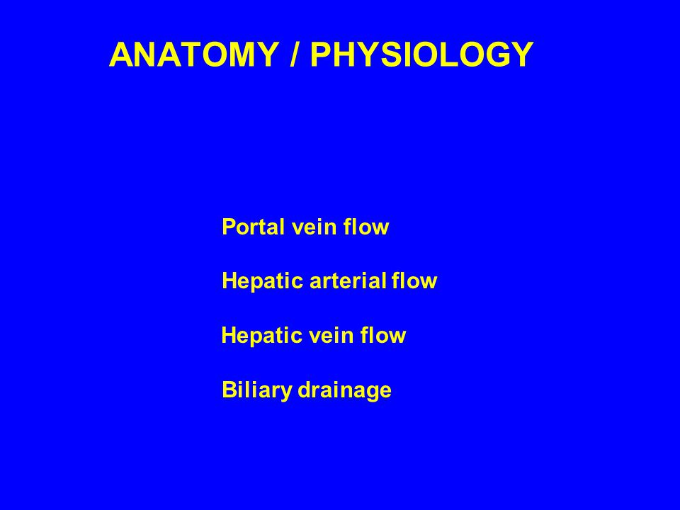 ANATOMY / PHYSIOLOGY Portal vein flow Hepatic arterial flow Hepatic vein flow Biliary drainage