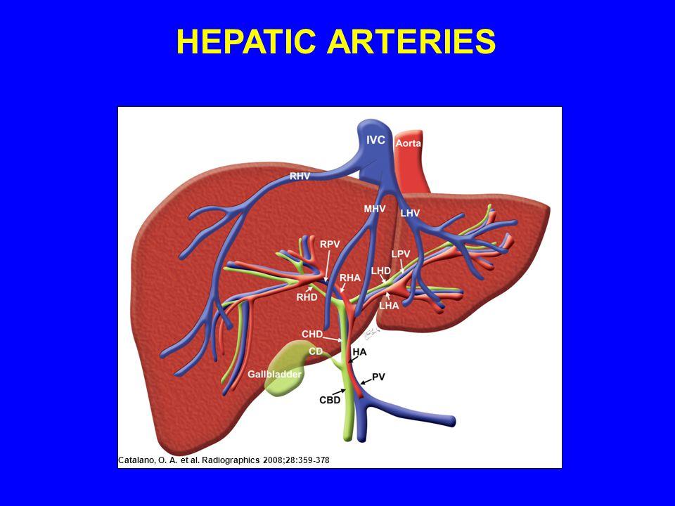Catalano, O. A. et al. Radiographics 2008;28:359-378 HEPATIC ARTERIES
