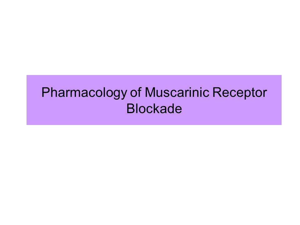 Pharmacology of Muscarinic Receptor Blockade