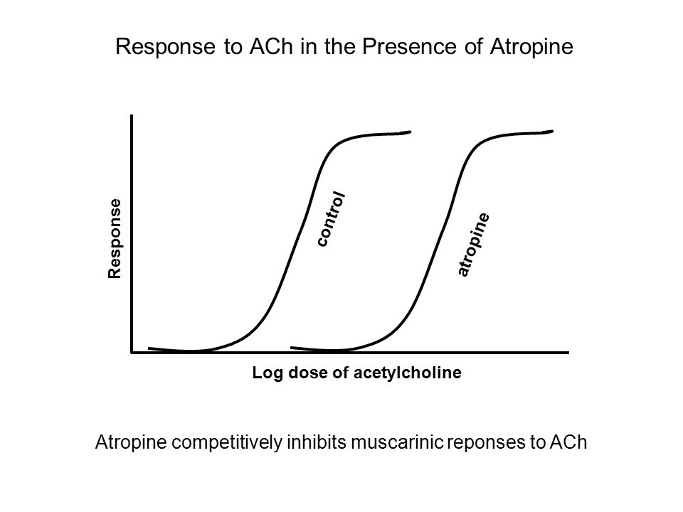 Response to ACh in the Presence of Atropine Log dose of acetylcholine Response control atropine Atropine competitively inhibits muscarinic reponses to ACh