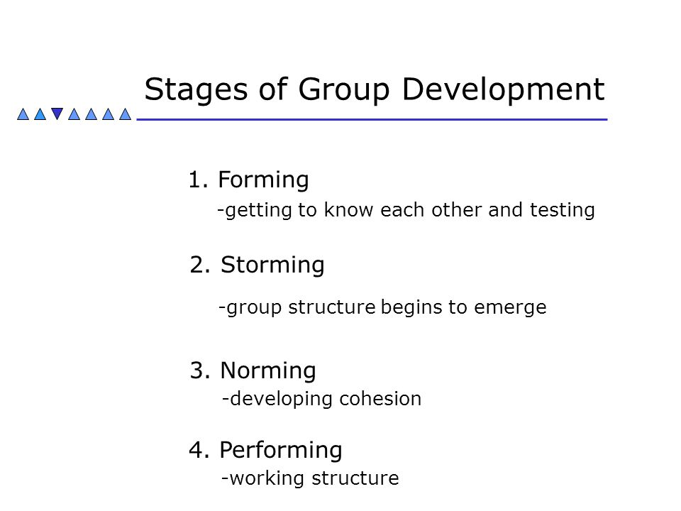 Stages of Group Development 1. Forming -getting to know each other and testing 2. Storming -group structure begins to emerge 3. Norming -developing co