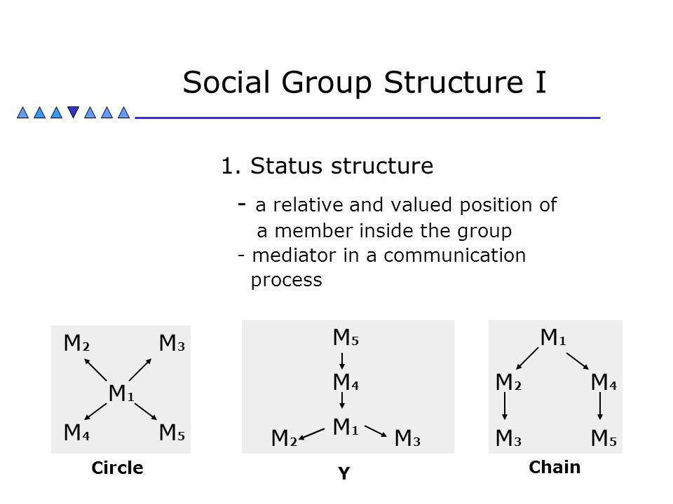 Social Group Structure I 1. Status structure - a relative and valued position of a member inside the group - mediator in a communication process M1M1