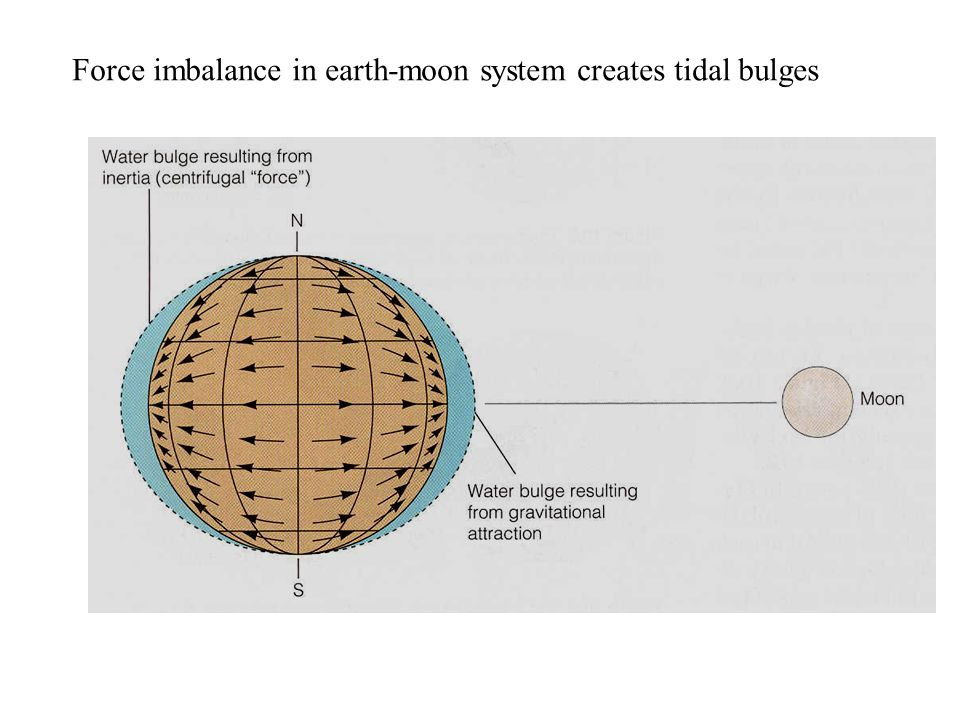Force imbalance in earth-moon system creates tidal bulges
