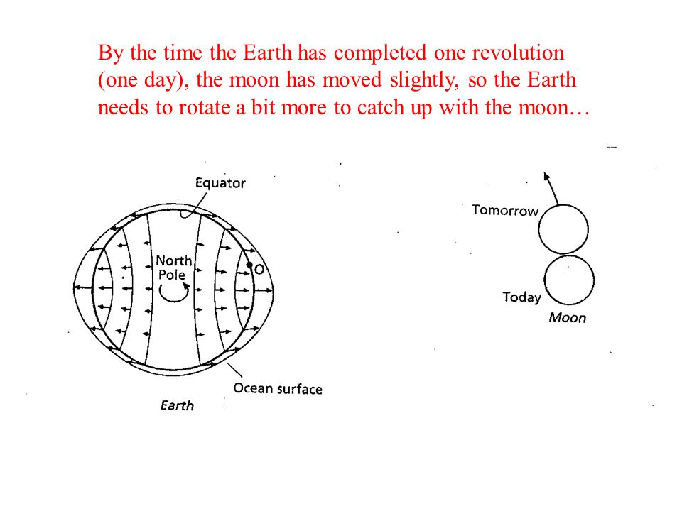 By the time the Earth has completed one revolution (one day), the moon has moved slightly, so the Earth needs to rotate a bit more to catch up with th