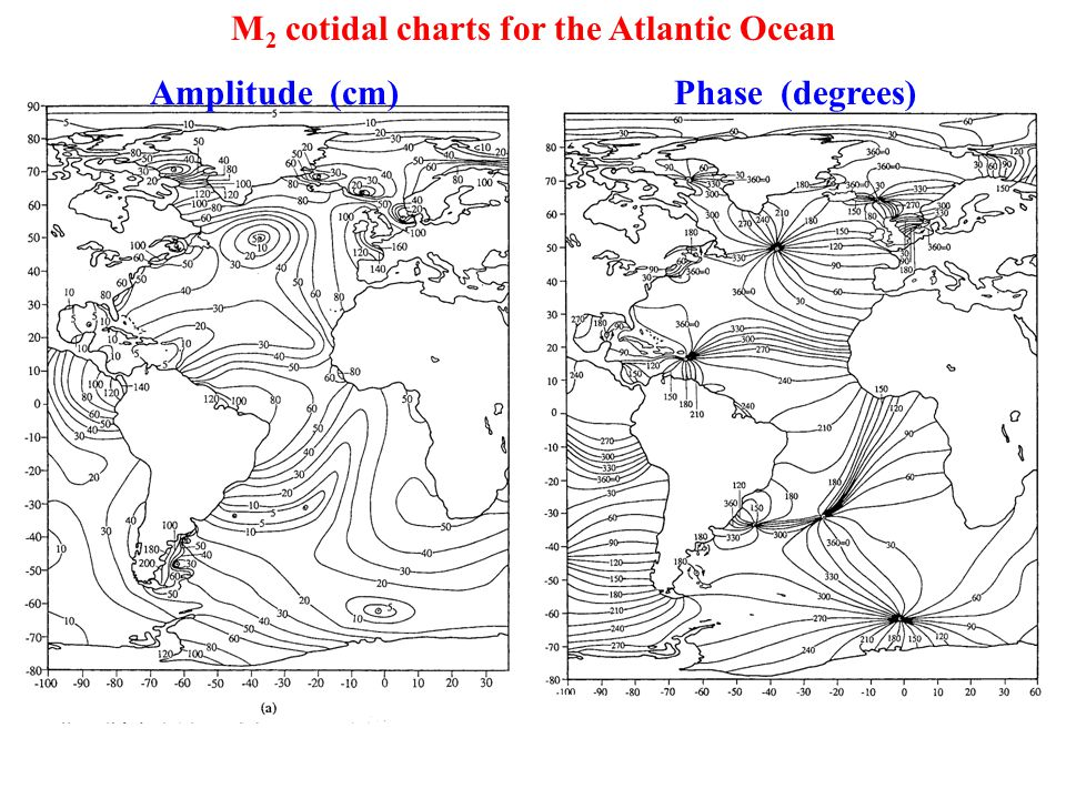 M 2 cotidal charts for the Atlantic Ocean Amplitude (cm) Phase (degrees)