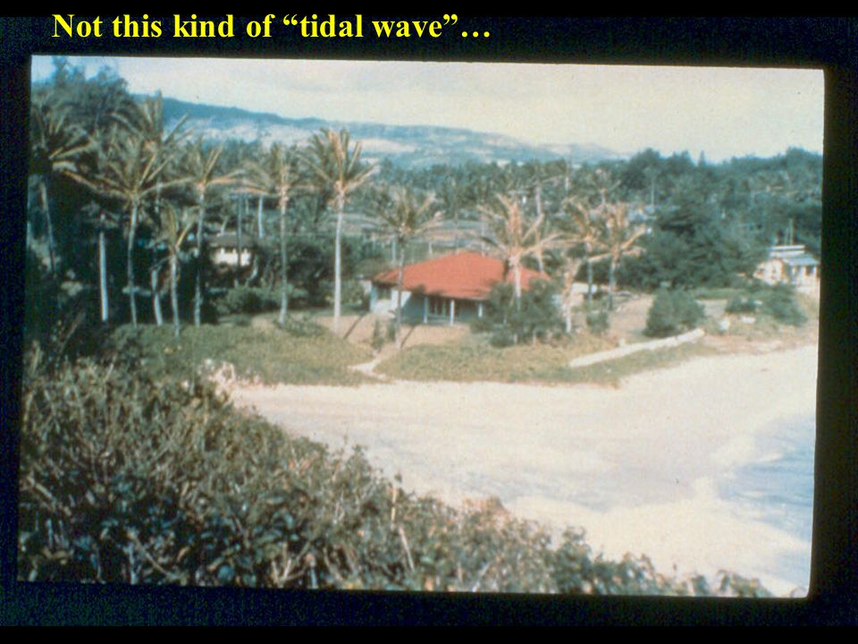 "Not this kind of ""tidal wave""…"