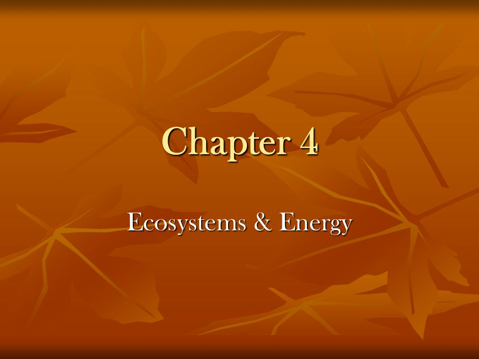 Your Responsibilities for Ch.4 Ecosystems & Energy Introduction p.