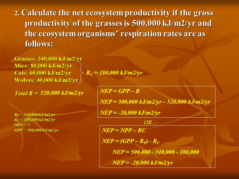 2. Calculate the net ecosystem productivity if the gross productivity of the grasses is 500,000 kJ/m2/yr and the ecosystem organisms' respiration rate