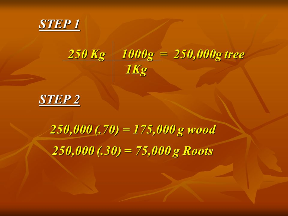 STEP 1 250 Kg 1000g = 250,000g tree 1Kg STEP 2 250,000 (.70) = 175,000 g wood 250,000 (.70) = 175,000 g wood 250,000 (.30) = 75,000 g Roots 250,000 (.