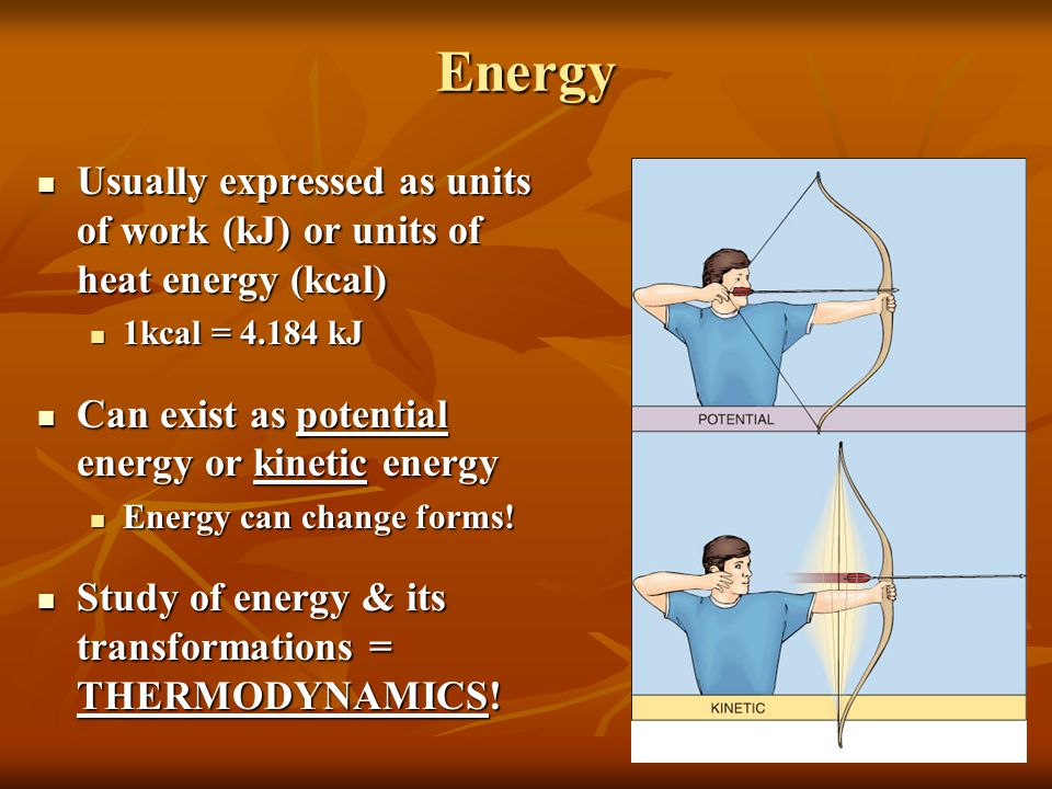 2.Give an example of an everyday scenario which demonstrates the First Law of Thermodynamics.