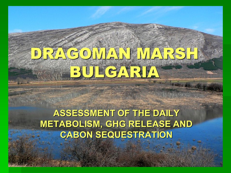 DRAGOMAN MARSH BULGARIA ASSESSMENT OF THE DAILY METABOLISM, GHG RELEASE AND CABON SEQUESTRATION