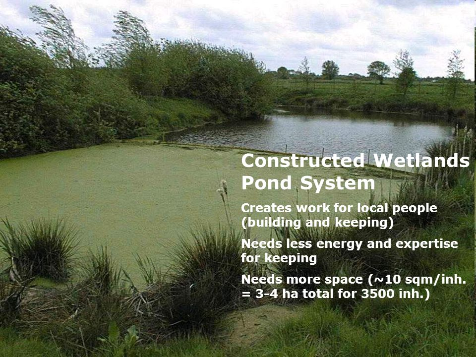 Constructed Wetlands Pond System Creates work for local people (building and keeping) Needs less energy and expertise for keeping Needs more space (~1