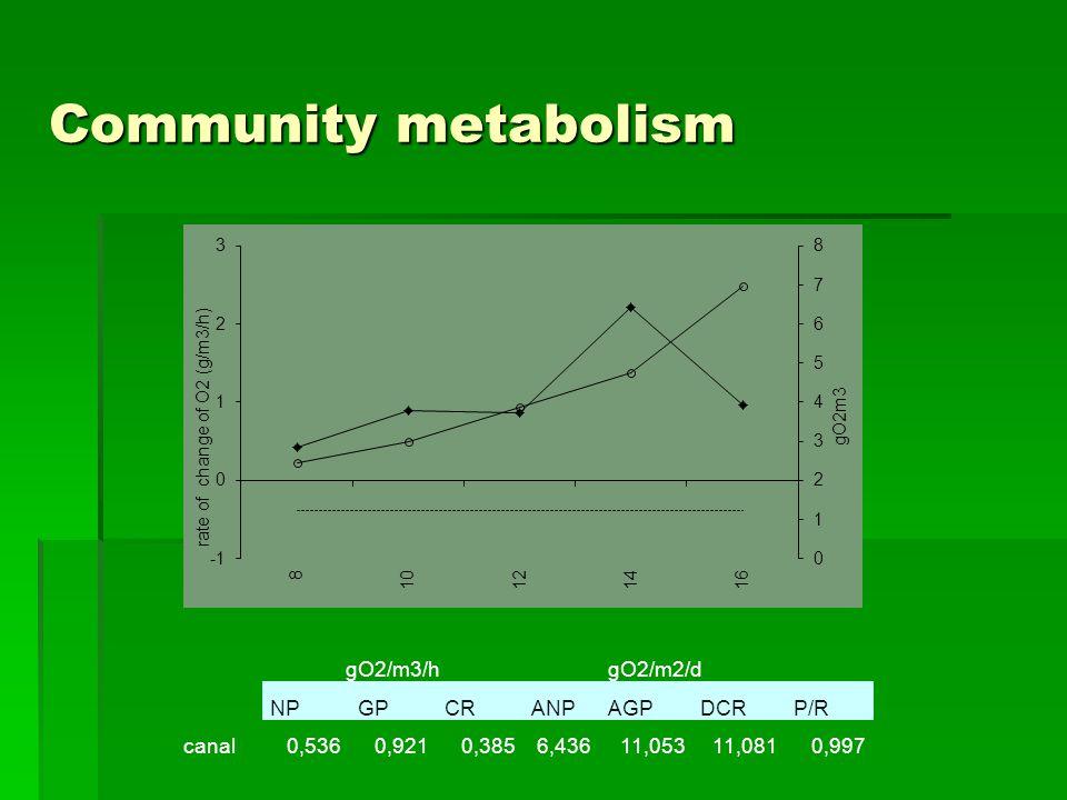 Community metabolism gO2/m3/hgO2/m2/d NPGPCRANPAGPDCRP/R canal0,5360,9210,3856,43611,05311,0810,997