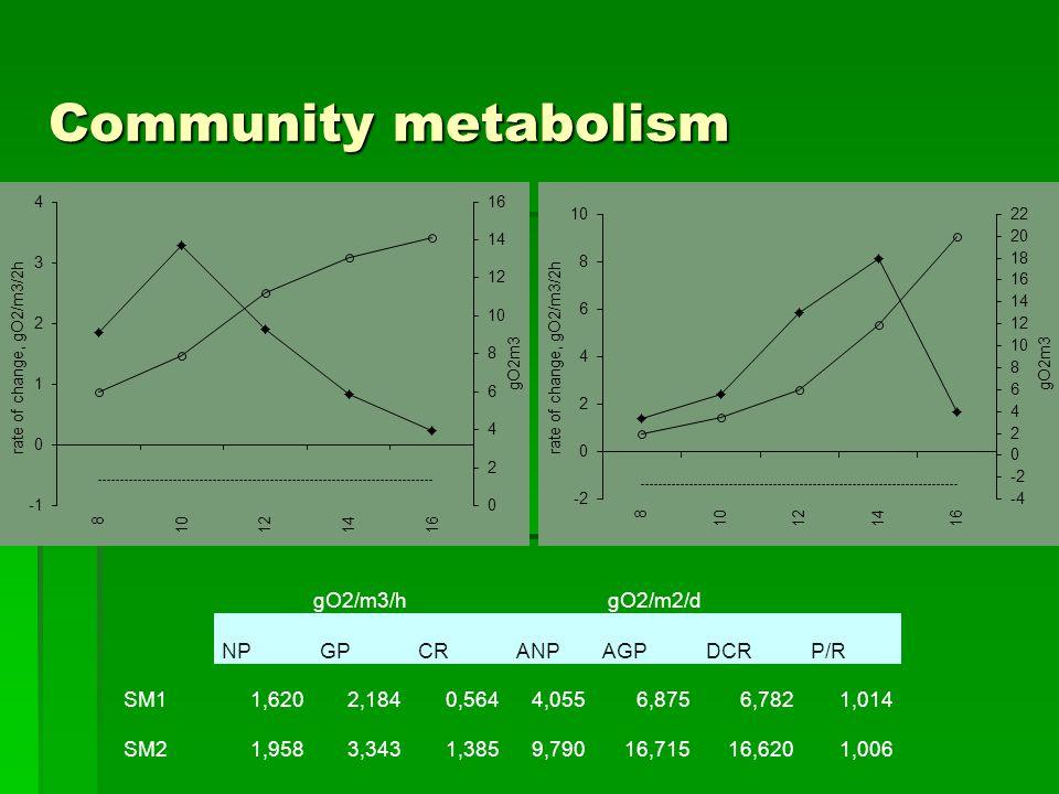 Community metabolism gO2/m3/hgO2/m2/d NPGPCRANPAGPDCRP/R SM11,6202,1840,5644,0556,8756,7821,014 SM21,9583,3431,3859,79016,71516,6201,006
