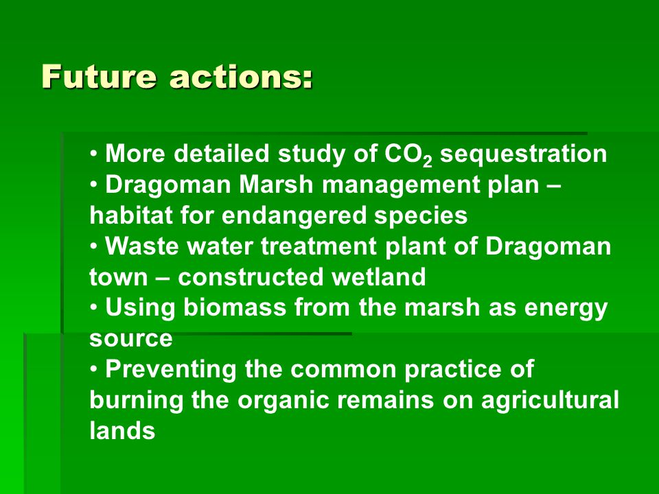 Future actions: More detailed study of CO 2 sequestration Dragoman Marsh management plan – habitat for endangered species Waste water treatment plant of Dragoman town – constructed wetland Using biomass from the marsh as energy source Preventing the common practice of burning the organic remains on agricultural lands