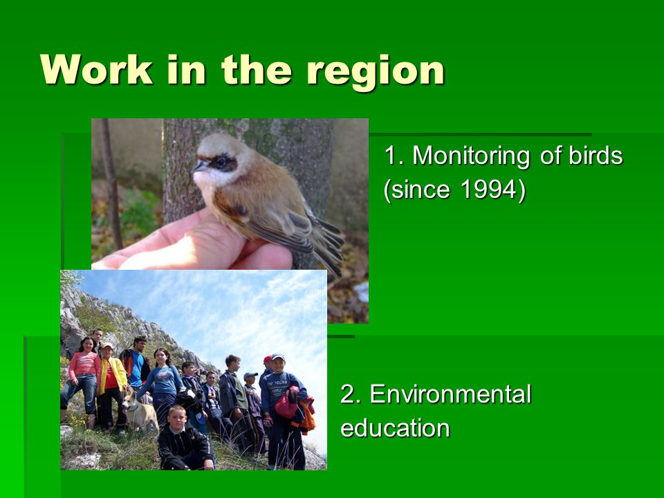 1. Monitoring of birds 1. Monitoring of birds (since 1994) (since 1994) 2. Environmental 2. Environmental education education Work in the region