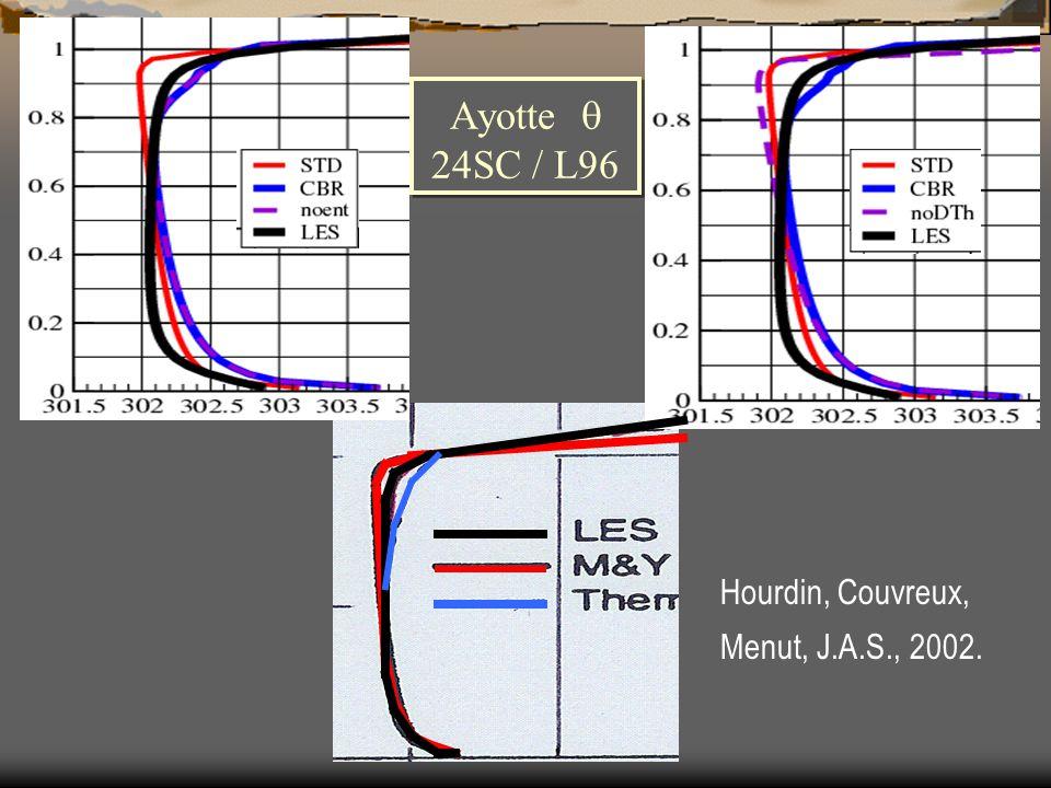 Ayotte  24SC / L96 Hourdin, Couvreux, Menut, J.A.S., 2002.