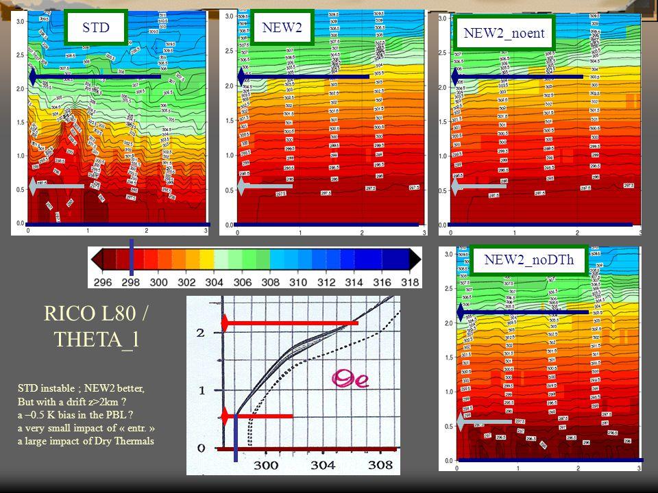 RICO L80 / THETA_l NEW2_noent NEW2_noDTh STDNEW2 STD instable ; NEW2 better, But with a drift z>2km .