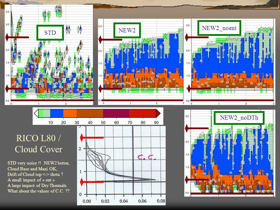 RICO L80 / Cloud Cover NEW2_noent NEW2_noDTh STD NEW2 STD very noisy !.