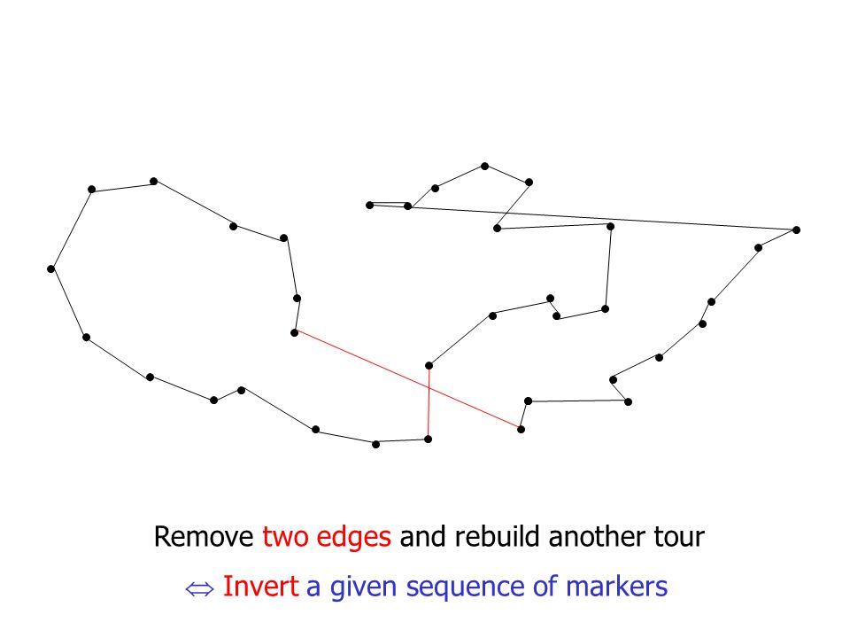Remove two edges and rebuild another tour  Invert a given sequence of markers